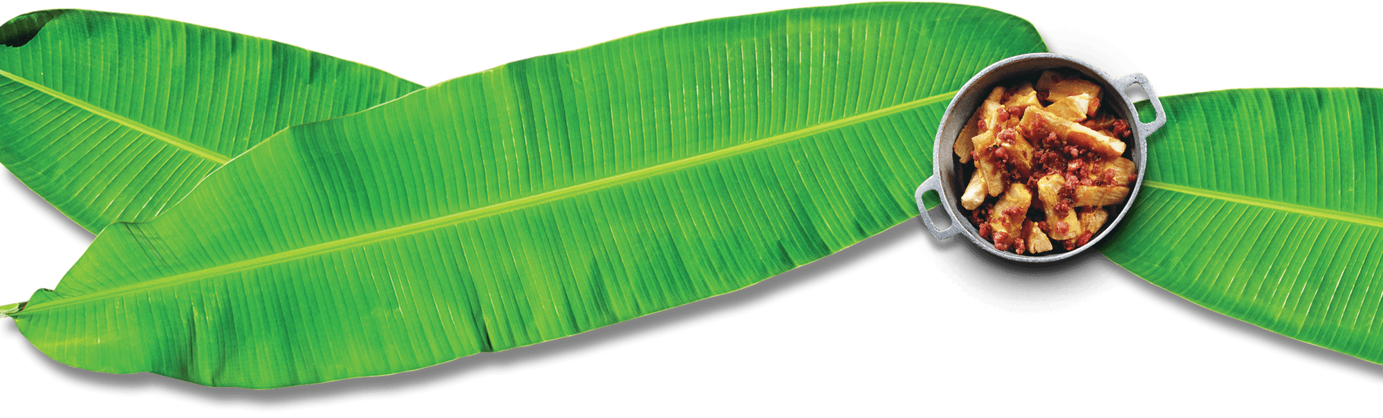 Amazoncom Charles Viancin Banana Leaf Lid  Rectangle 9